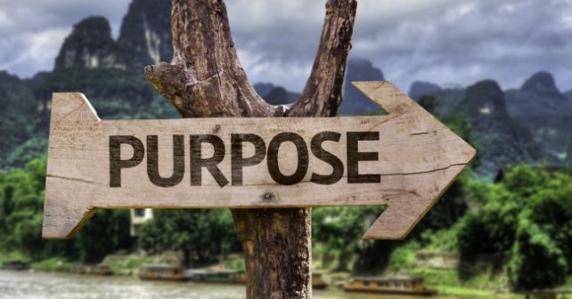 Purpose Driven Business